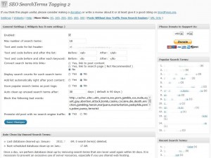 Seo Search Terms 2 Tagging