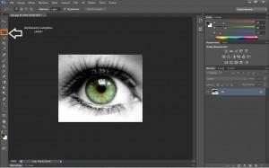 kolor oczu CS6